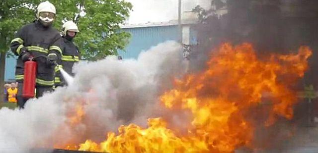 Akce na záchranu lakýrníka, jemuž se nepodařilo z haly uniknout, zdroj: Lindab